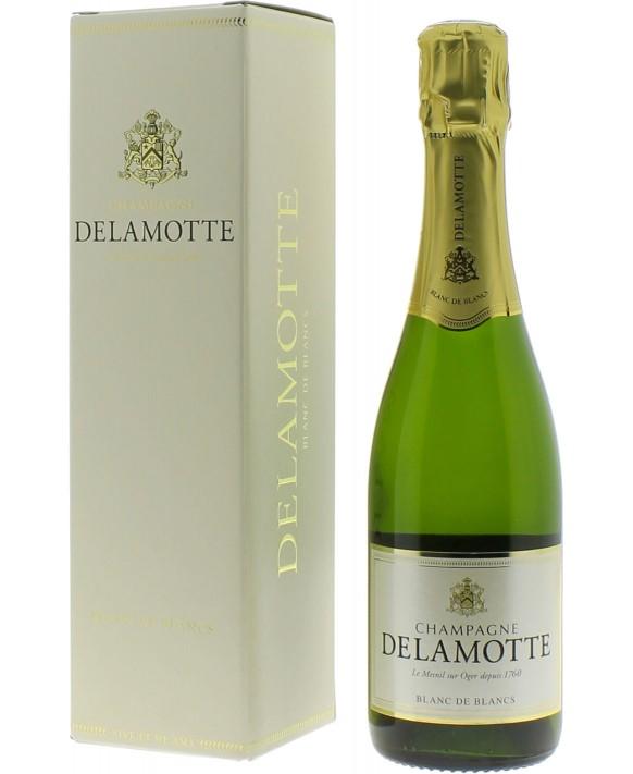 Champagne Delamotte Blanc de Blancs casket half bottle